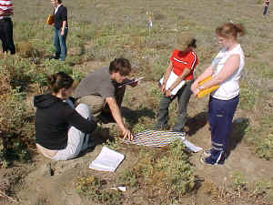 Sand dune vegetation succession study