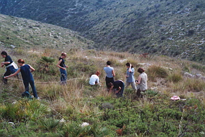 Students studying the impact of fire on the vegetation