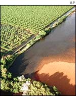 Aerial view of the Guadimar river