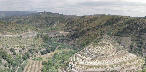 Priorat vineyards often face northeast to protect the grapes from the afternoon sun