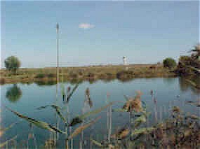 Llobregat Delta: view across towards the airport