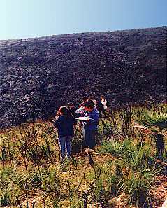 Garraf Natural Park: investigating the effects of fire on the ecosystem